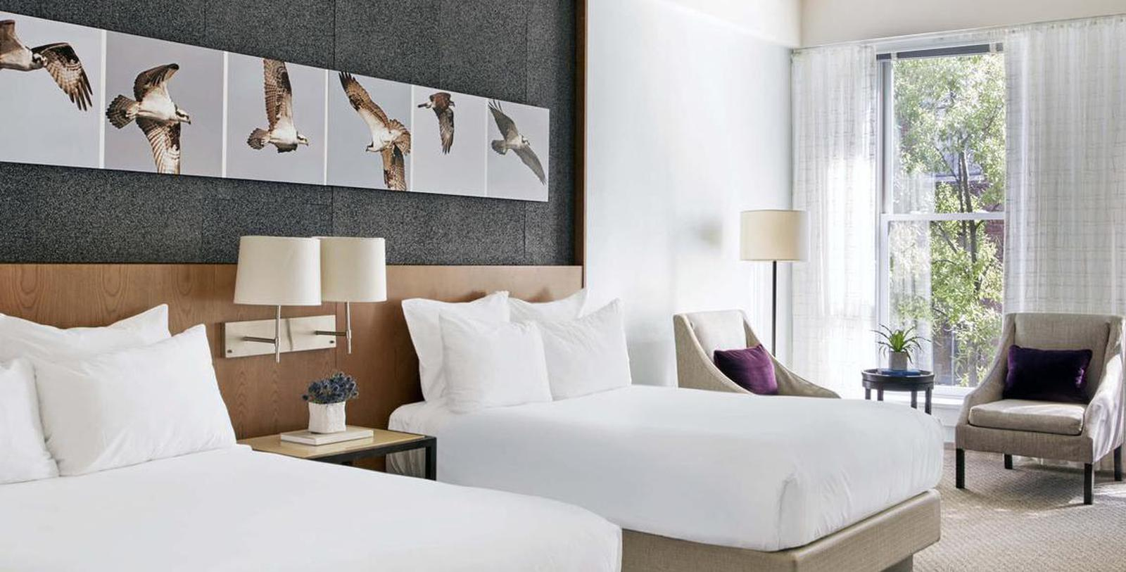 Image of guestroom 21c Museum Hotel Louisville by MGallery, 1800, Member of Historic Hotels of America, in Louisville, Kentucky, Special Offers, Discounted Rates, Families, Romantic Escape, Honeymoons, Anniversaries, Reunions