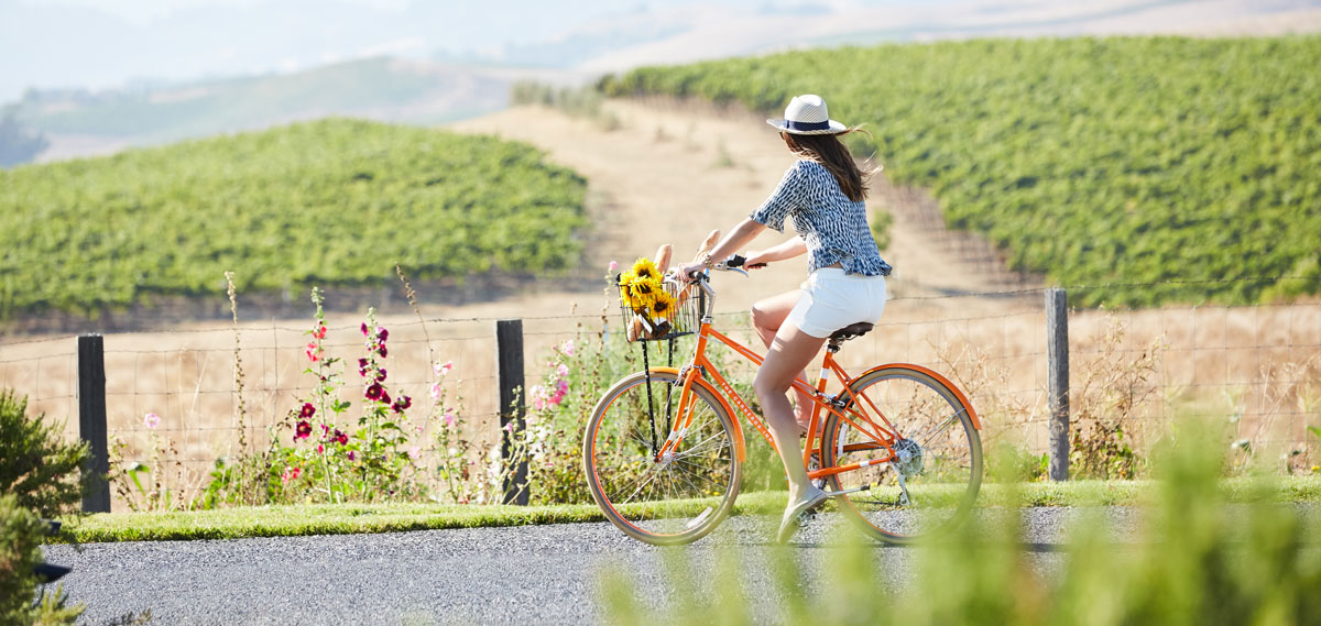 Activities:      Carneros Resort and Spa  in Napa