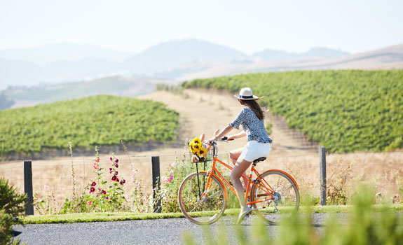 Carneros Resort and Spa  - Activities