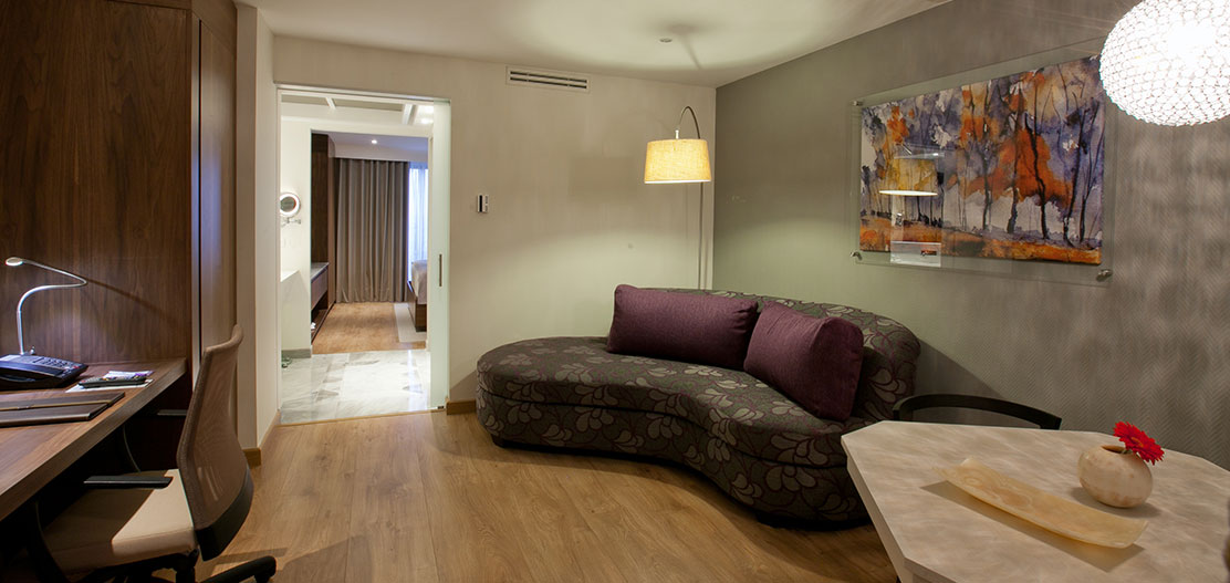 Accommodations:      HS HOTSSON Hotel Leon  in Leon de los Aldamas