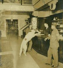 Ghost Stories:      Hawthorne Hotel  in Salem