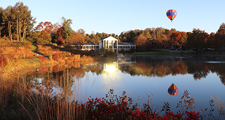 Local Attractions:      Boar's Head Resort  in Charlottesville