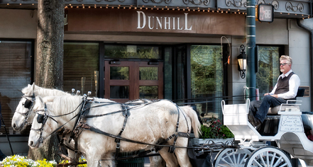 The Dunhill Hotel  in Charlotte