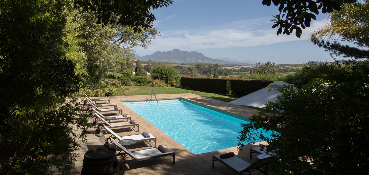 Activities:      The Devon Valley Hotel  in Stellenbosch