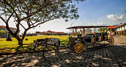 Activities:      Las Casas Filipinas de Acuzar  in Bagac