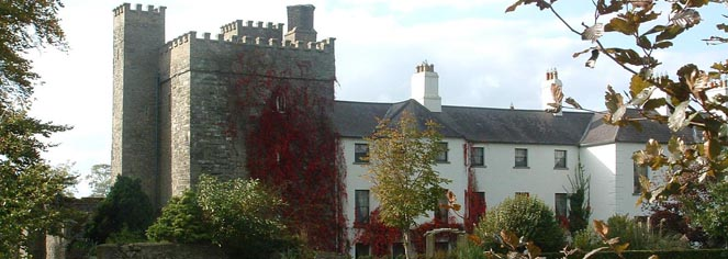 Barberstown Castle  in Straffan