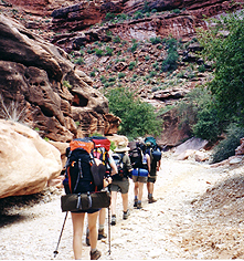 Local Attractions:      Phantom Ranch  in Grand Canyon