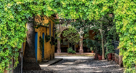 Hacienda el Carmen Hotel & Spa  in Ahualulco de Mercado
