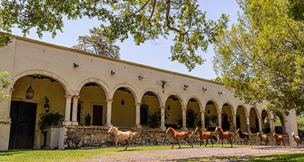 Hacienda Labor de Rivera  in Teuchitlán