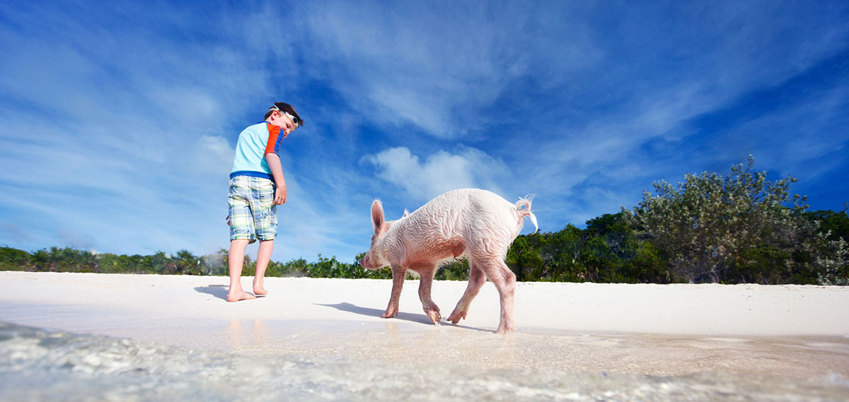 Activities:      Grand Isle Resort & Spa  in George Town - Exuma