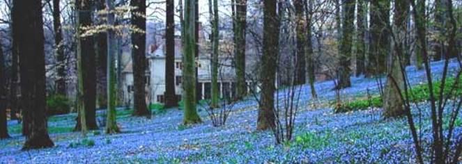 The Inn at Montchanin Village  in Montchanin