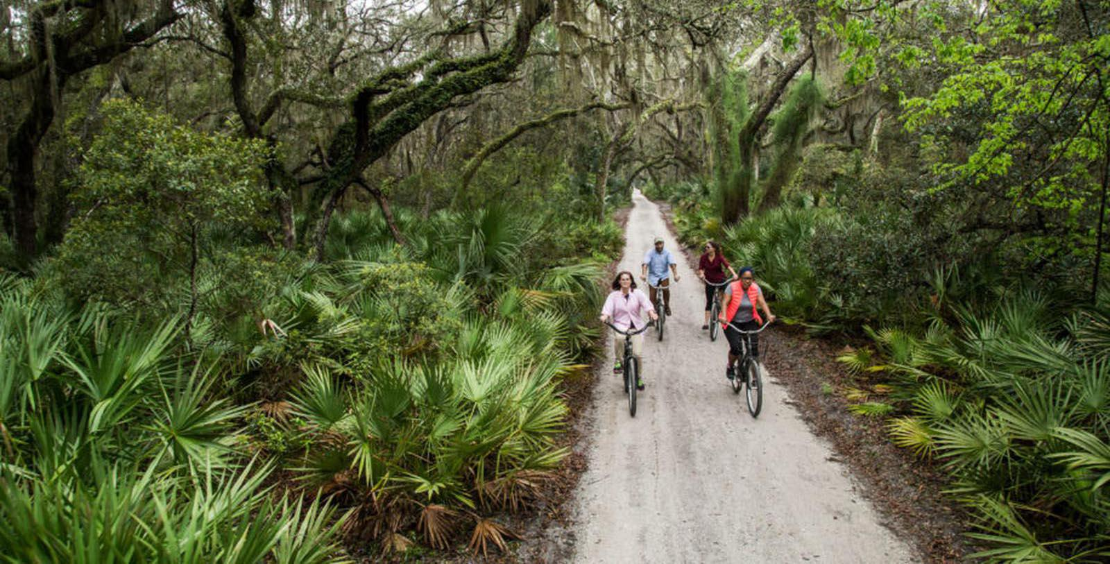 Image of bike trail at Greyfield Inn, 1900, Member of Historic Hotels of America, in Cumberland Island, Georgia, Explore