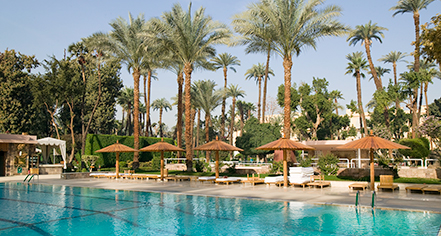 Activities:      Sofitel Winter Palace Luxor  in Luxor