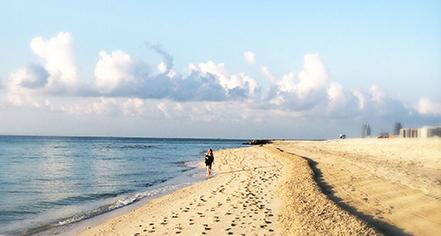Local Attractions:      Casa Claridge's at Faena Miami Beach  in Miami Beach