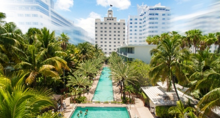 Local Attractions:      The National Hotel  in Miami Beach