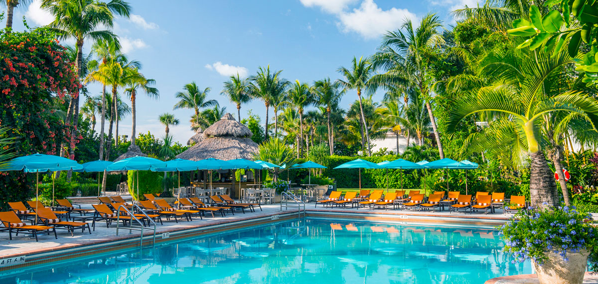 Special Offers:      The Palms Hotel & Spa  in Miami Beach