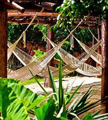 Activities:      Hacienda Misne  in Merida