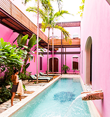 Activities:      Rosas & Xocolate Boutique Hotel  in Merida