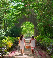 Local Attractions:      Hacienda San Jose, A Luxury Collection Hotel  in Tixkokob