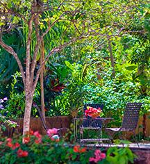 Local Attractions:      Hacienda Santa Rosa, A Luxury Collection Hotel  in Santa Rosa