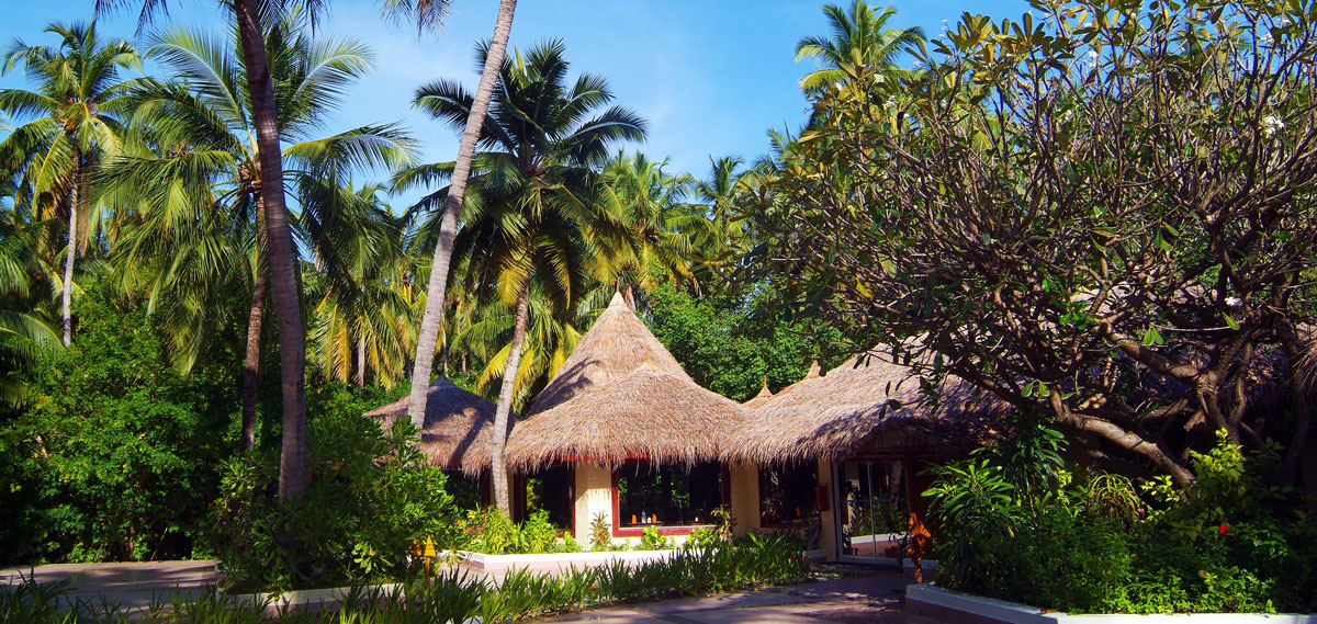 Accommodations:      Biyadhoo Island Resort  in South Male Atoll