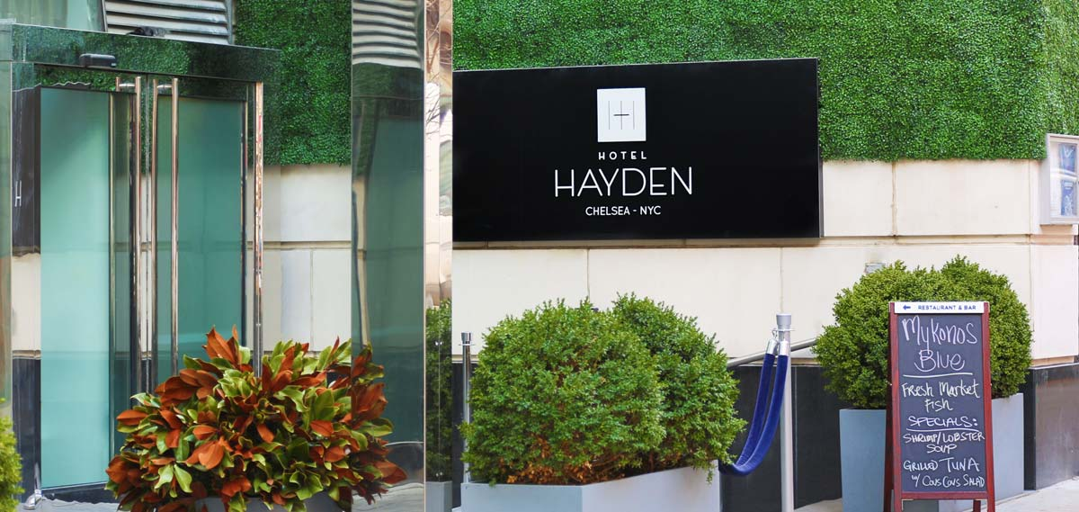 Activities:      Hotel Hayden  in New York