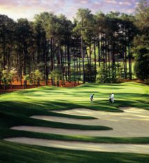 Activities:      Pinehurst Resort  in Pinehurst