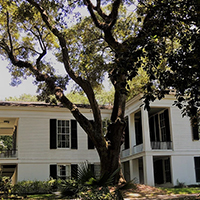 Oakleigh House Museum