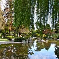 Japanese Friendship Garden Of San Jose