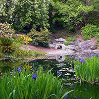 University Of California Botanical Garden At Berkeley