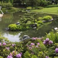 Jardin Botanique De Montréal (Montreal Botanical Garden)