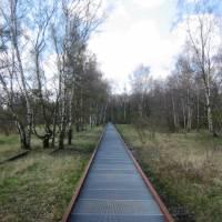 Naturpark Schöneberger Südgelände