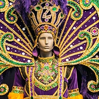 Mardi Gras Museum Of Costumes And Culture