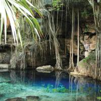 Cenote X'batun