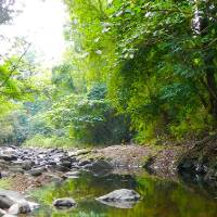 Bataan National Park