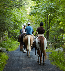 Activities:      Mohonk Mountain House  in New Paltz