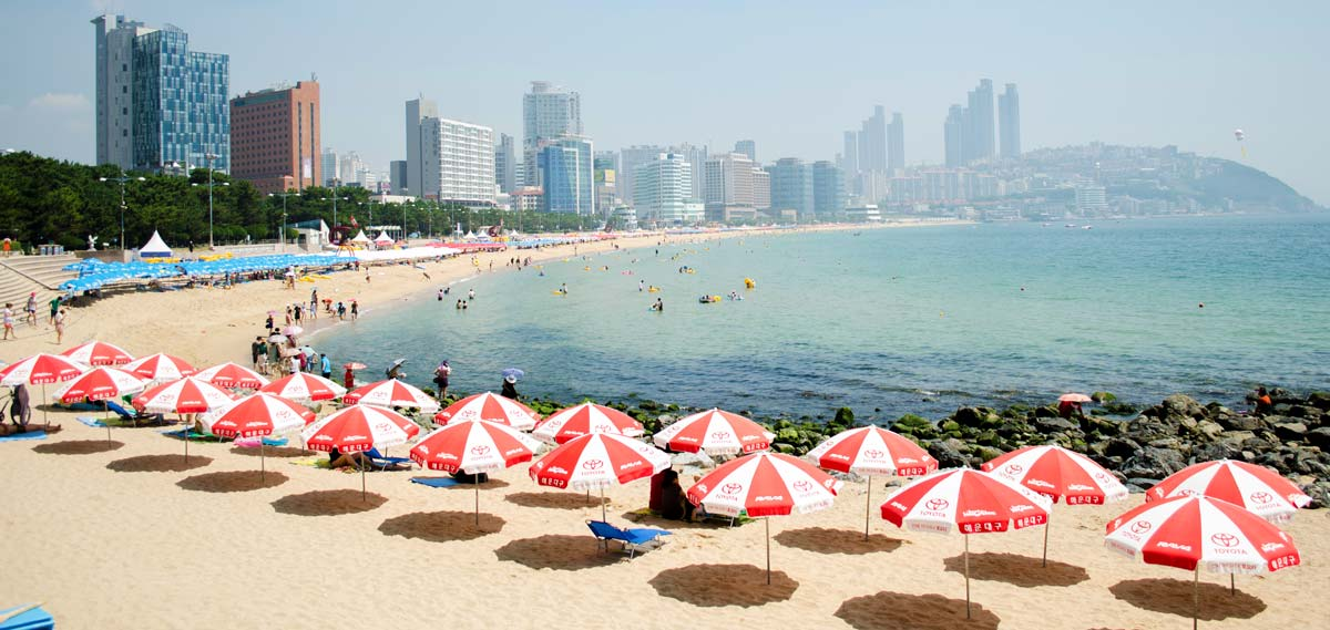 Activities:      Shilla Stay Haeundae  in Busan