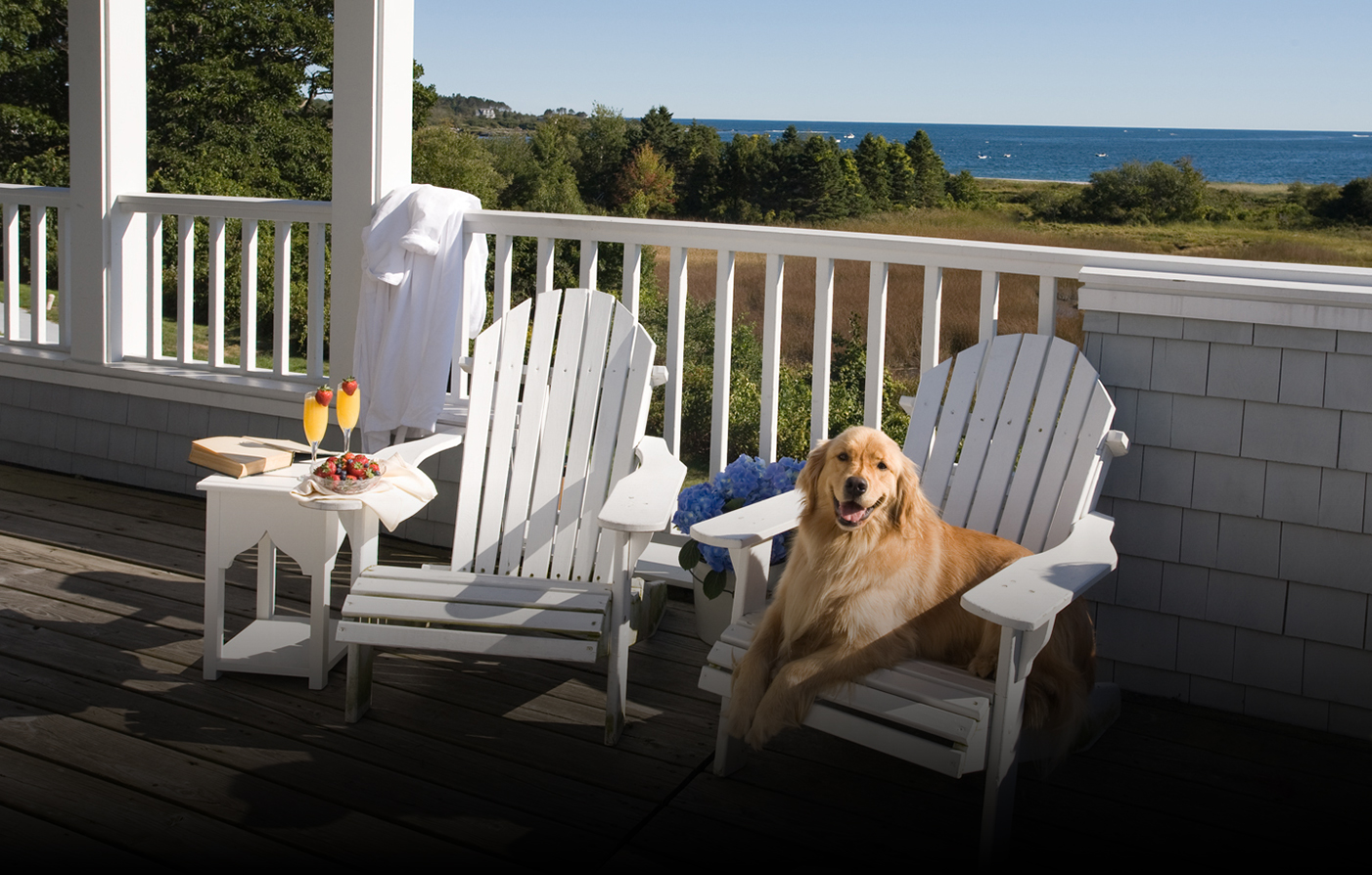 Activities:      Inn by the Sea  in Cape Elizabeth