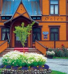 Dalen Hotel  in Dalen