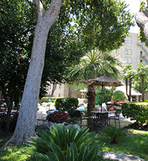 Activities:      The Crockett Hotel  in San Antonio
