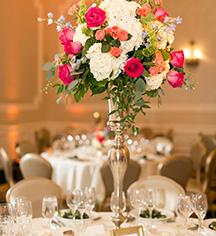 Weddings:      Morris Inn at Notre Dame  in Notre Dame