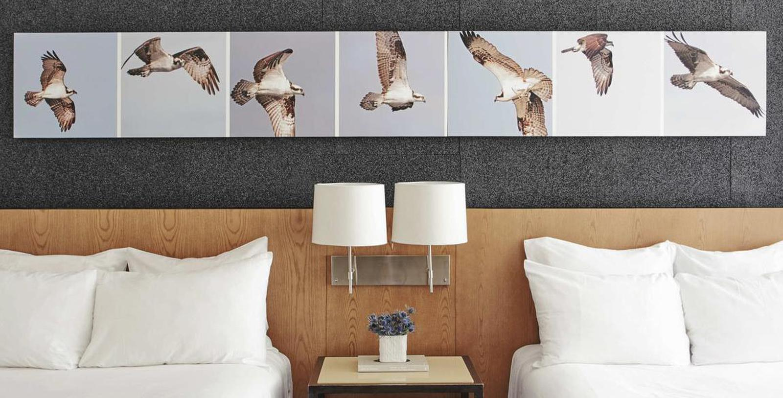 Image of guestroom 21c Museum Hotel Louisville by MGallery, 1800, Member of Historic Hotels of America, in Louisville, Kentucky, Explore