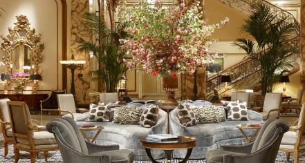 Activities:      The Fairmont Hotel San Francisco  in San Francisco