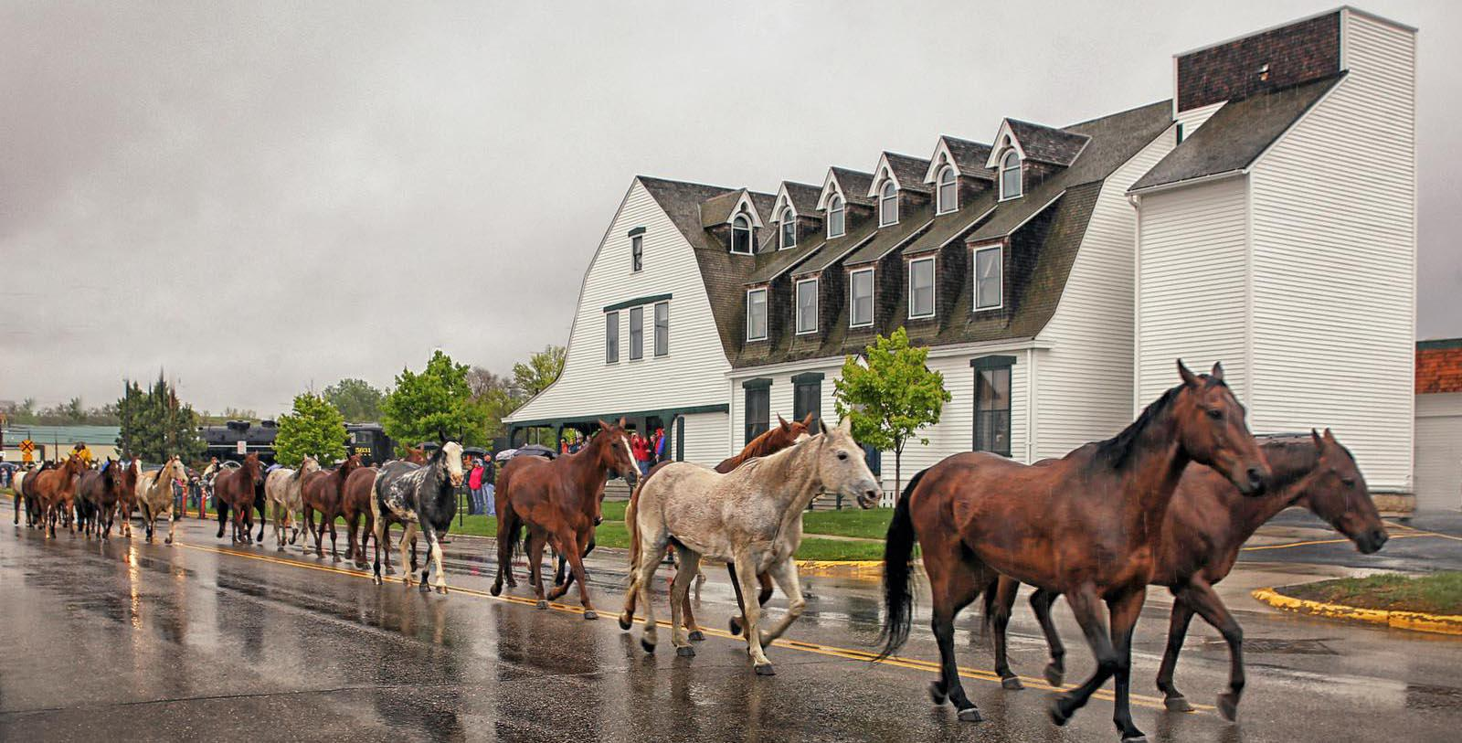 Horses walking by Exterior Sheridan Inn, 1893, Member of Historic Hotels of America, in Sheridan, Wyoming, Discover