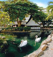 Activities:      Caribe Hilton  in San Juan