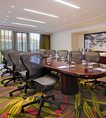 Meetings at      The Condado Plaza Hilton  in San Juan