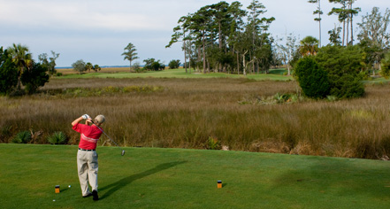 Activities:      The King and Prince Beach and Golf Resort  in St. Simons Island