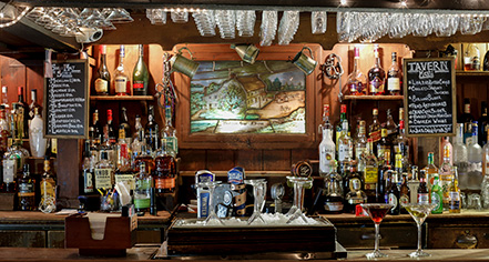 Activities:      Beekman Arms and Delamater Inn  in Rhinebeck