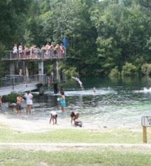 Activities:      The Lodge at Wakulla Springs  in Wakulla Springs