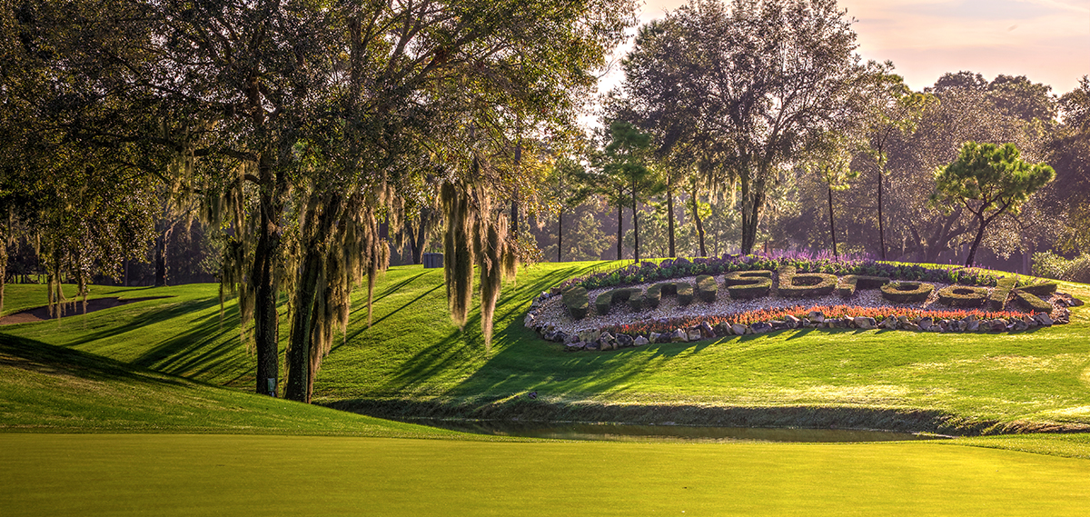 Innisbrook A Salamander Golf & Spa Resort Offers